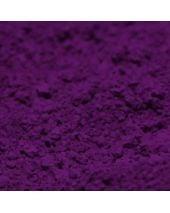 Fluorescent - AF Purple