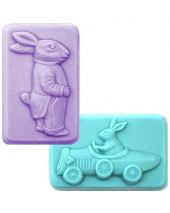 Nature 2 Gents Soap Mold