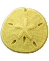 Nature Sand Dollar Soap Mold