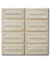 Tray Goats Milk Soap Mold