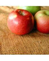 Red Apple Fragrant Oil