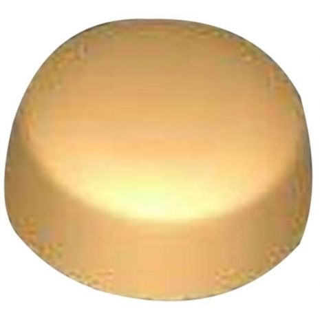 Stylized Dome Top Circle Soap Mold