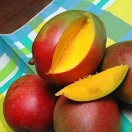 Fresh Mango Fragrant Oil