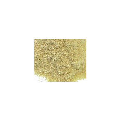 Luffa Powder - Natural